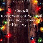 Самый предусмотрительный план подготовки к Новому году